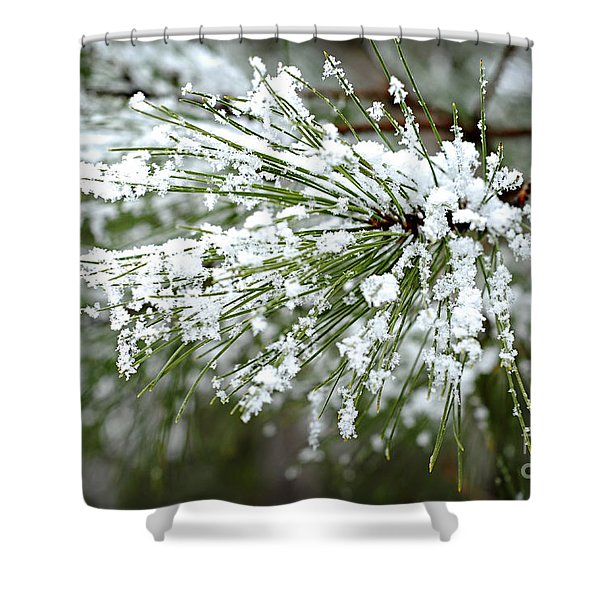 Snowy Pine Needles Shower Curtain