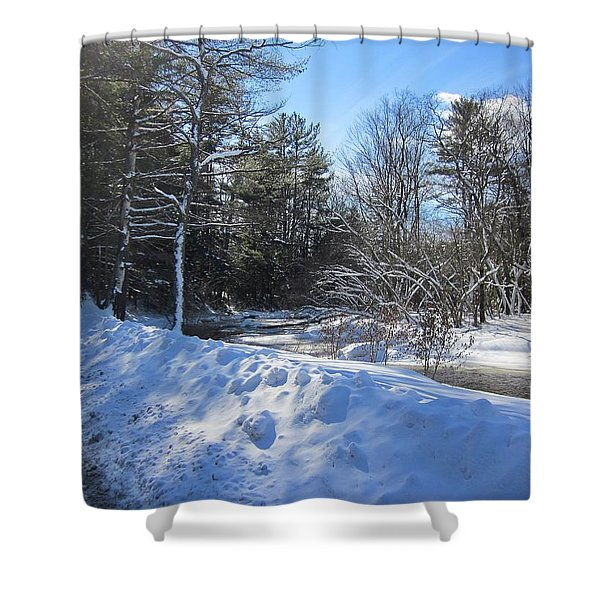 Snowy River Road Shower Curtain