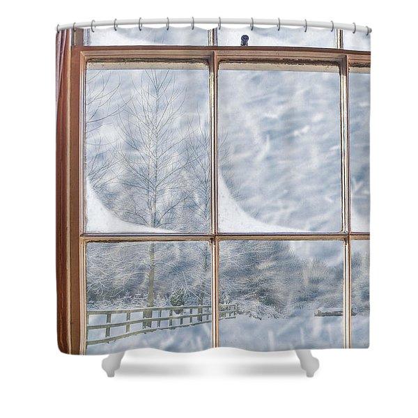 Snowy Window Shower Curtain
