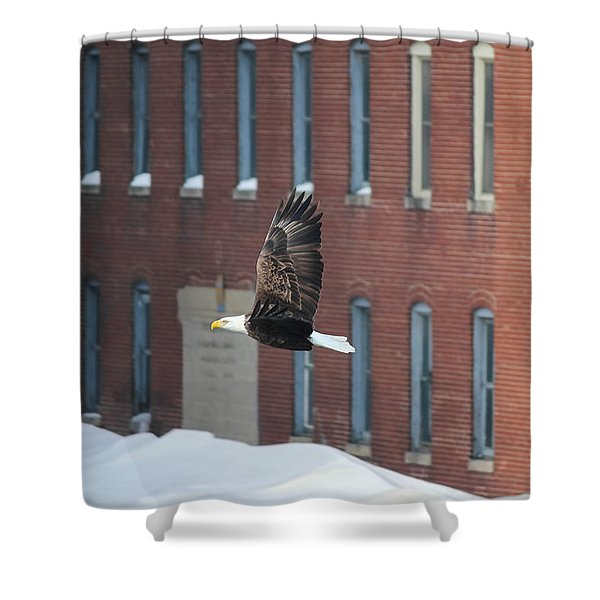 Soaring To Greatness Shower Curtain