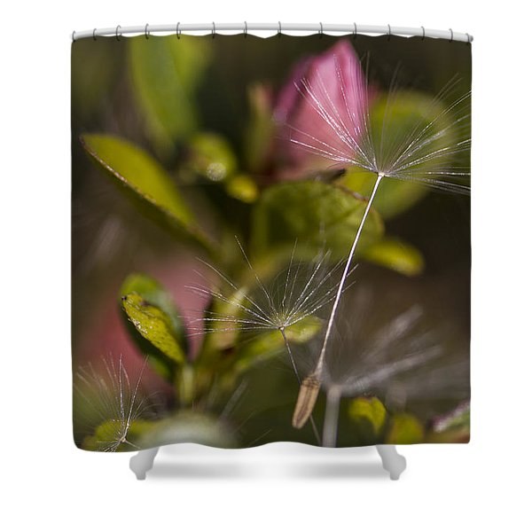 Soft And Delicate Shower Curtain
