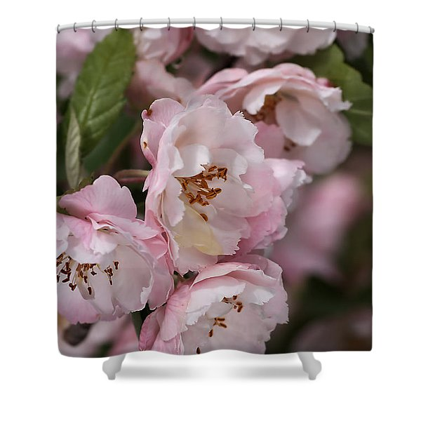 Soft Blossom Shower Curtain