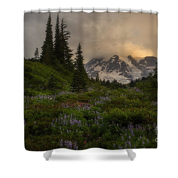 Soft Spoken Rainier Meadows Shower Curtain