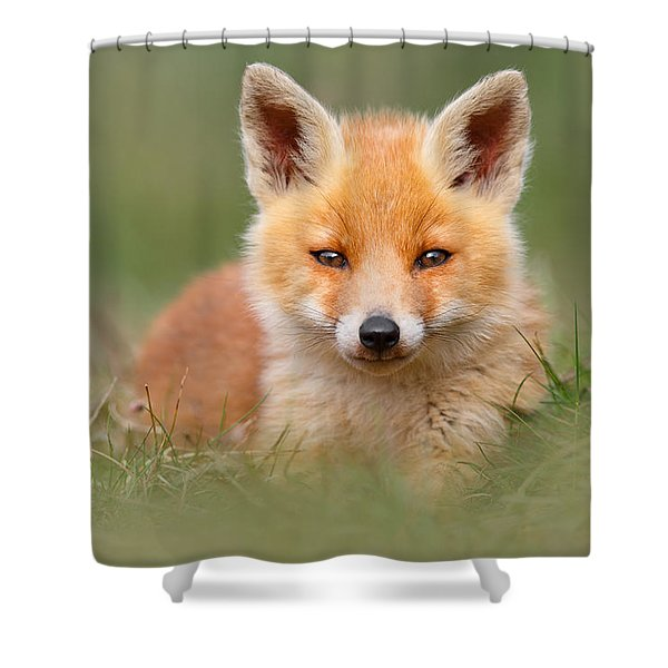 Softfox -young Fox Kit Lying In The Grass Shower Curtain