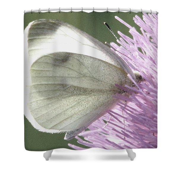 Softly Into Summer Shower Curtain