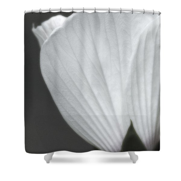 Softly Now Shower Curtain