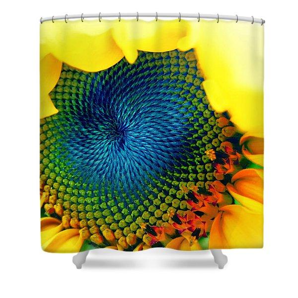 Solar Energy Shower Curtain