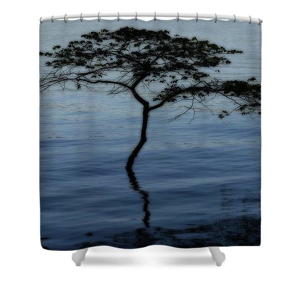 Solitaire Tree Shower Curtain