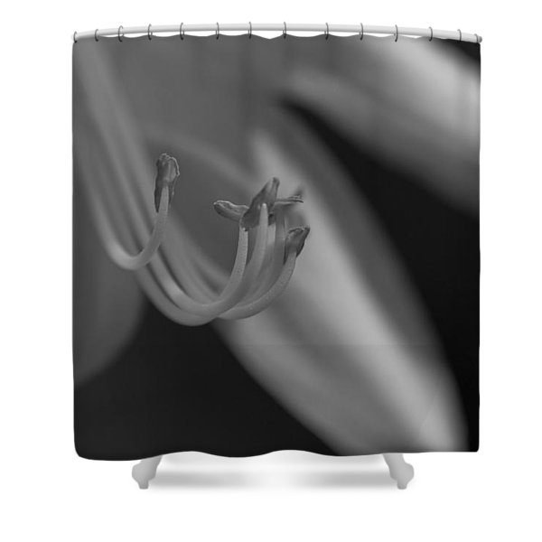 Soulless Bloom Shower Curtain
