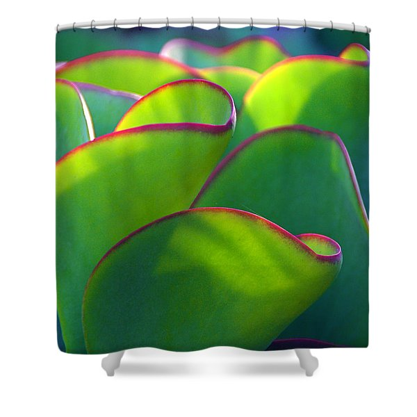 South African Beauty Shower Curtain