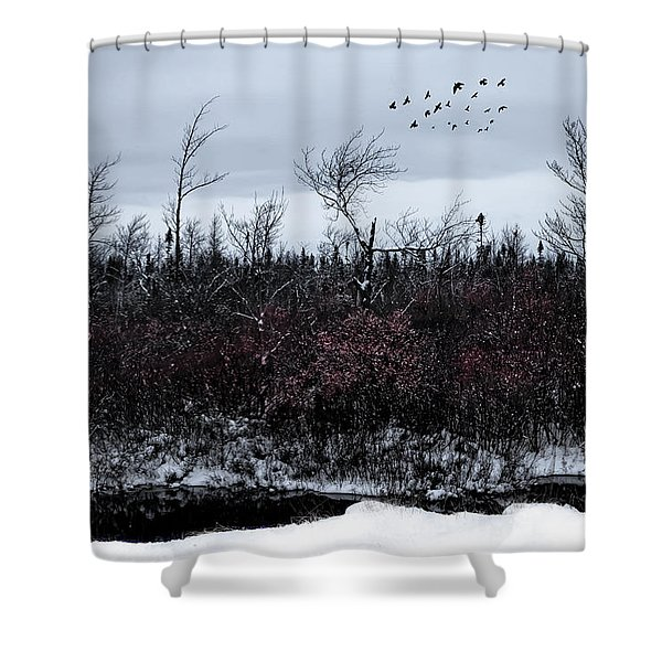 South To The Moon Shower Curtain