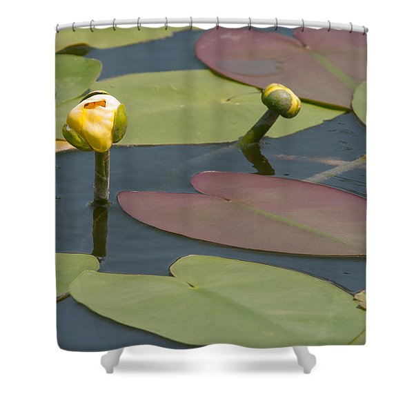 Spatterdock Heart Shower Curtain