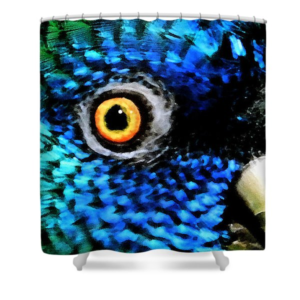 Speaking Eye  Shower Curtain