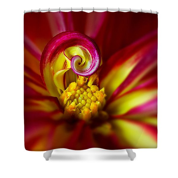Shower Curtain featuring the photograph Spiral by Mary Jo Allen