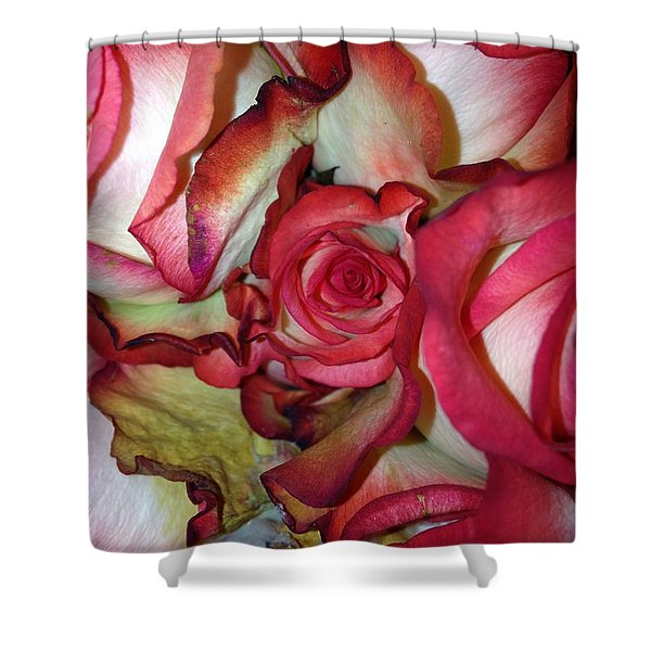 Spirited Rose  Shower Curtain