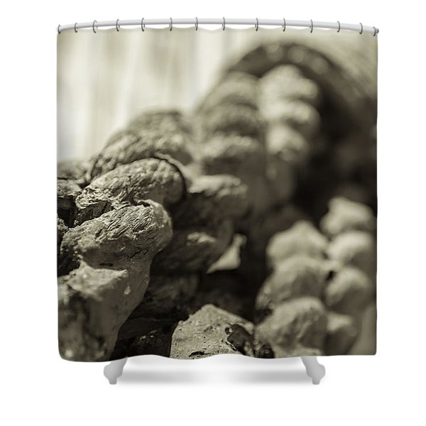 Spliced And Bound Black And White Sepia Shower Curtain