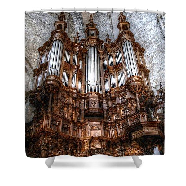 Spooky Organ Shower Curtain