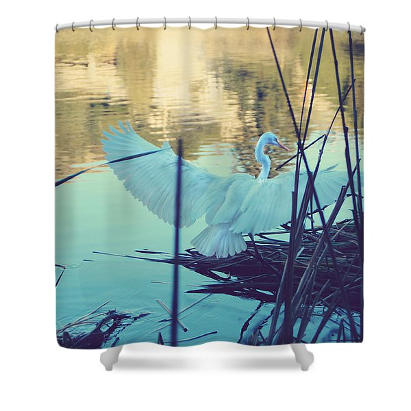Spread Those Wings And Fly Shower Curtain