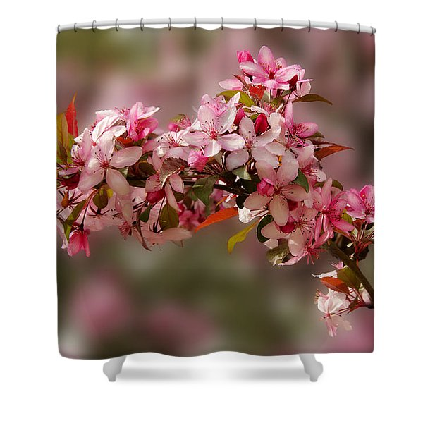Cheery Cherry Blossoms Shower Curtain