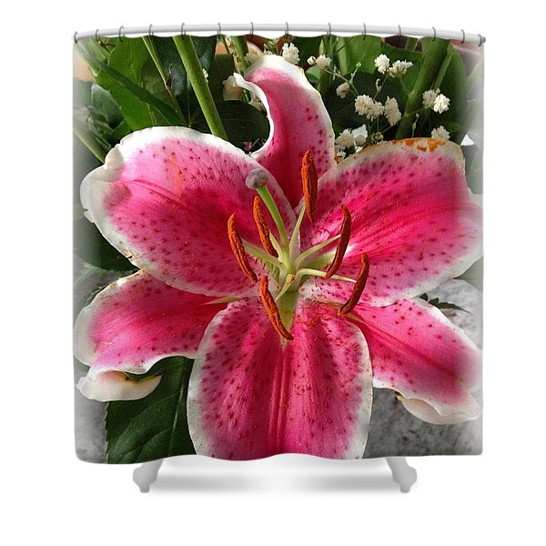 Spring Flower Collection 3 Shower Curtain