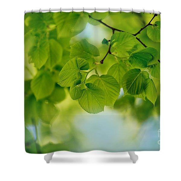 Spring Green Shower Curtain