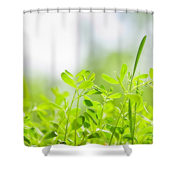 Spring Green Sprouts Shower Curtain