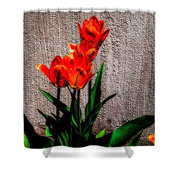 Spring In The City Shower Curtain