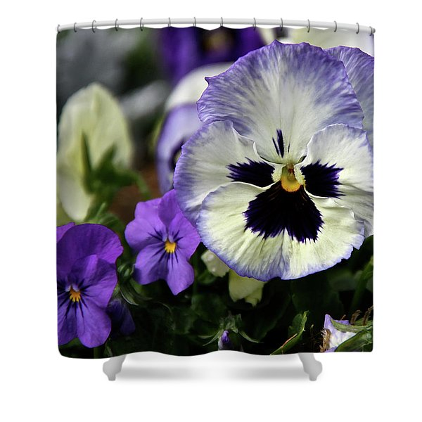 Spring Pansy Flower Shower Curtain