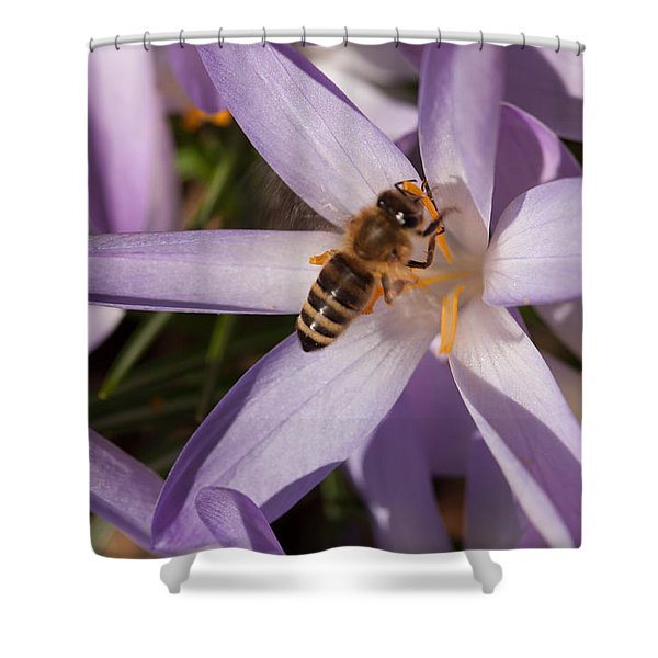 Spring's Welcome Shower Curtain