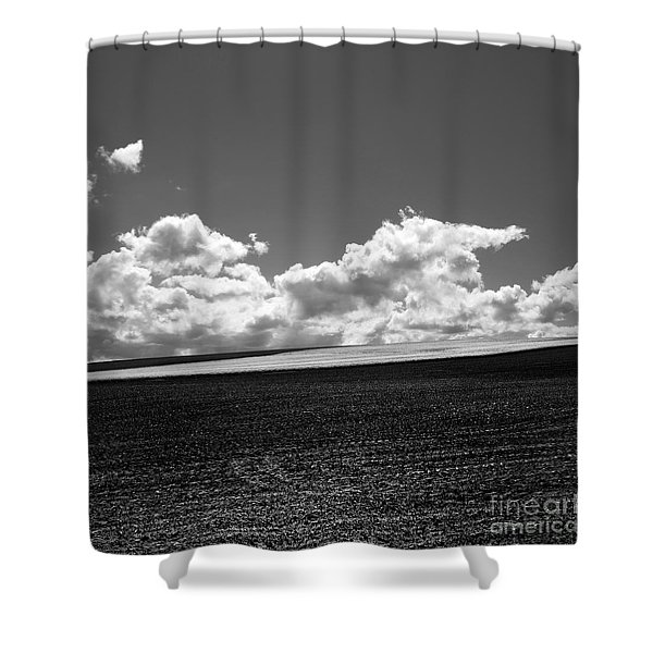 Sprouting Field Of Sunflowers And Field Of Rape At Back. Auvergne. France Shower Curtain