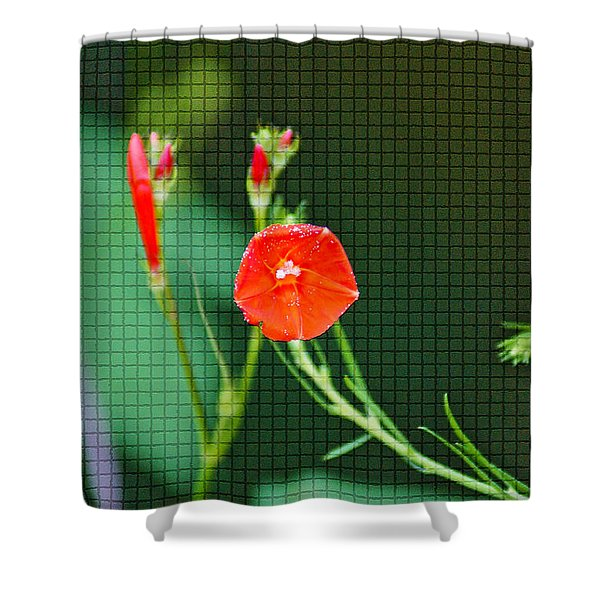 Squared Glory Shower Curtain