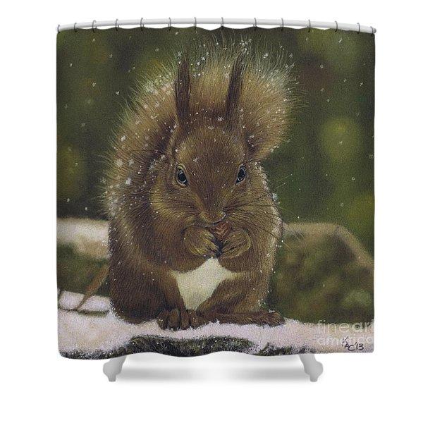 Squirrel Nutkin Shower Curtain