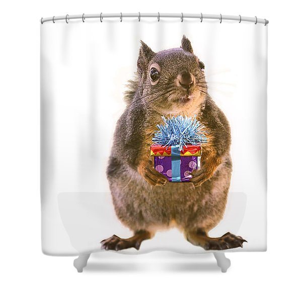 Squirrel With Gift Shower Curtain