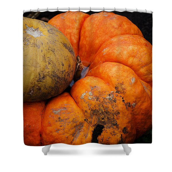 Stacked Pumpkins Shower Curtain