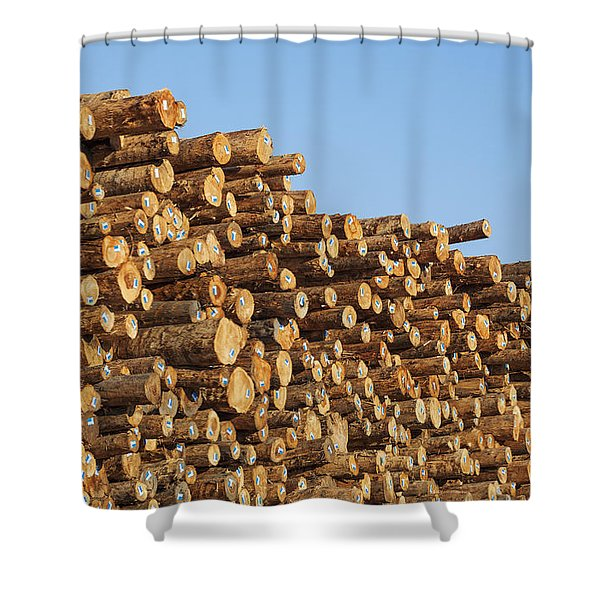 Shower Curtain featuring the photograph Stacks Of Logs by Bryan Mullennix