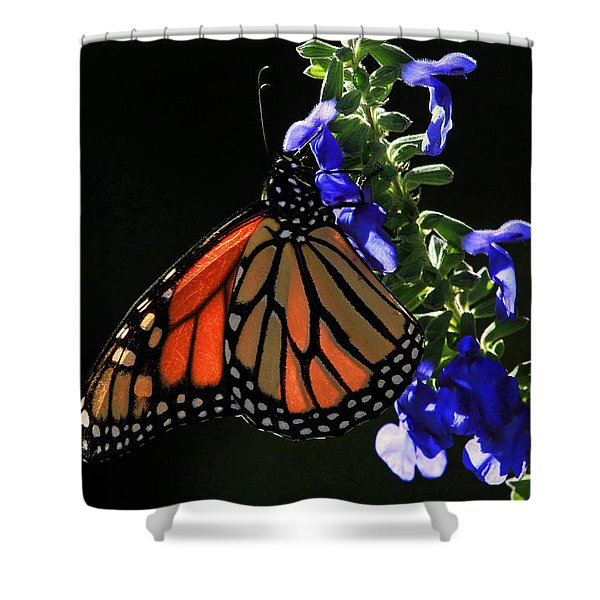 Stained Glass Wings Shower Curtain