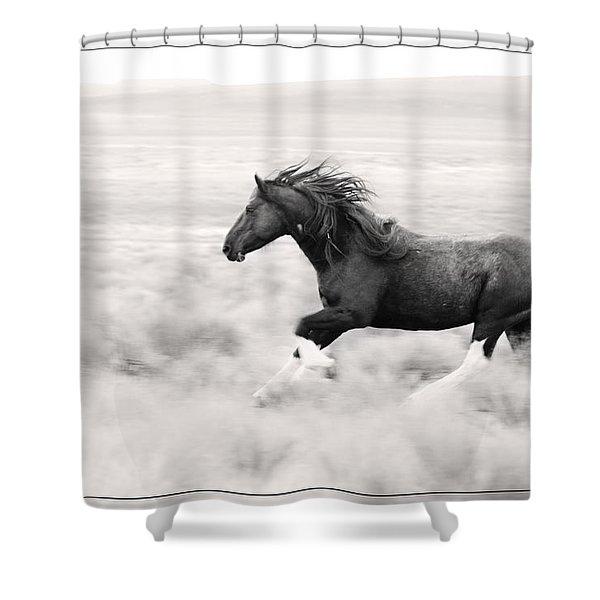 Stallion Blur Shower Curtain
