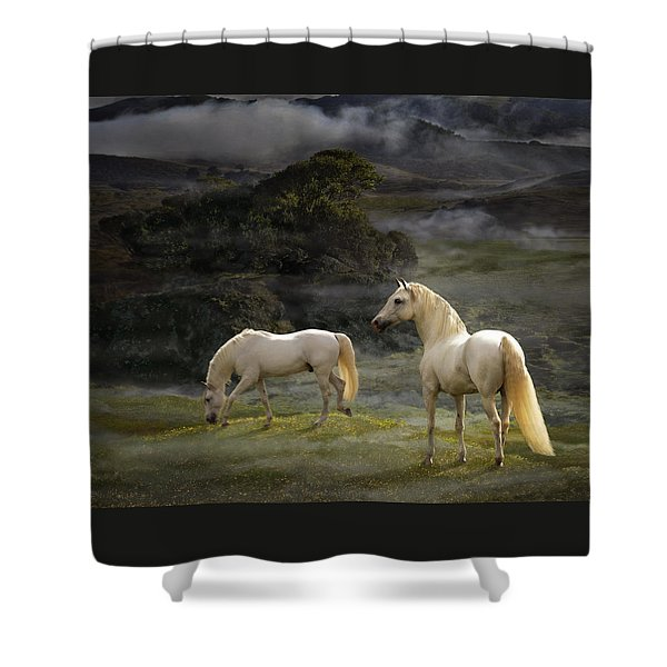 Stallions Of The Gods Shower Curtain