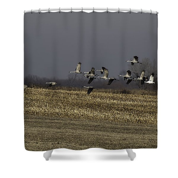 Standing Out 1 Shower Curtain