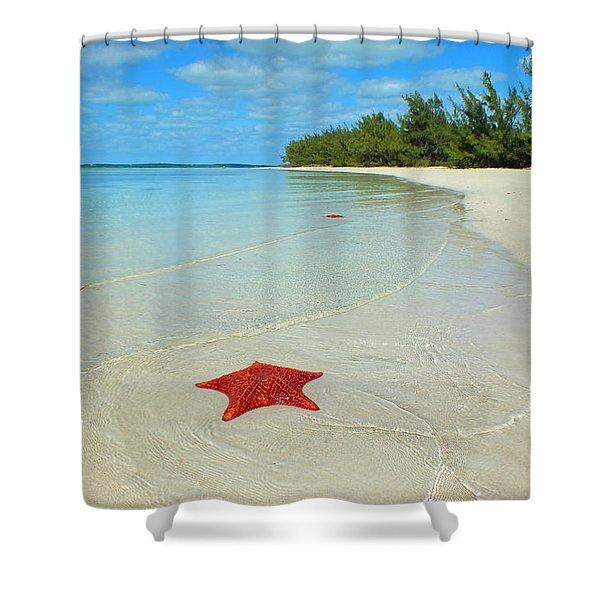 Starfish 5 Of Bottom Harbour Sound Shower Curtain