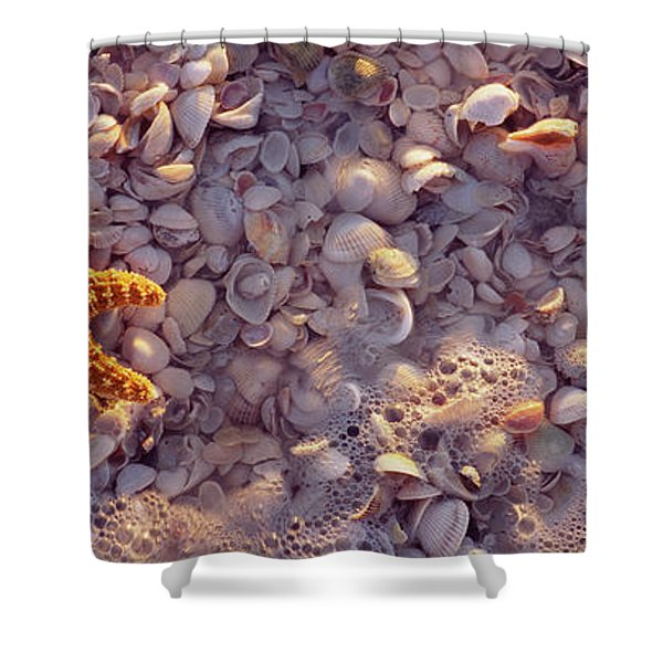 Starfish On The Beach, Lovers Key State Shower Curtain