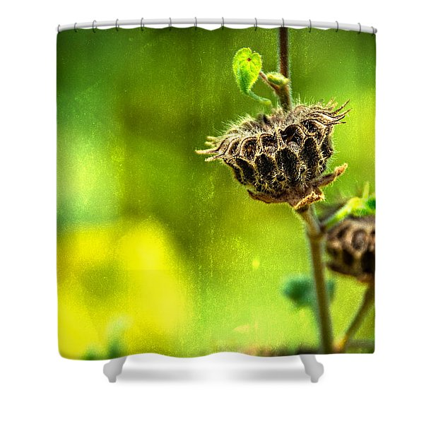 Stark Beauty Shower Curtain