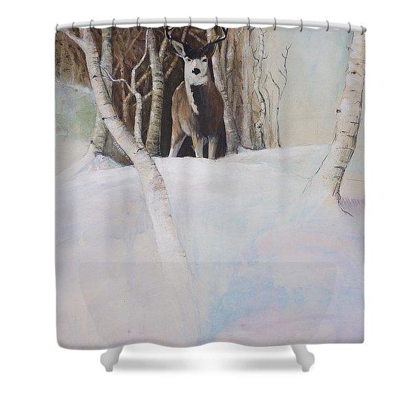 Startled Morning Shower Curtain