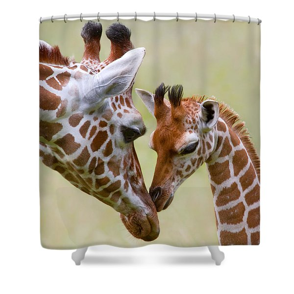 Stick With Me Kid Shower Curtain
