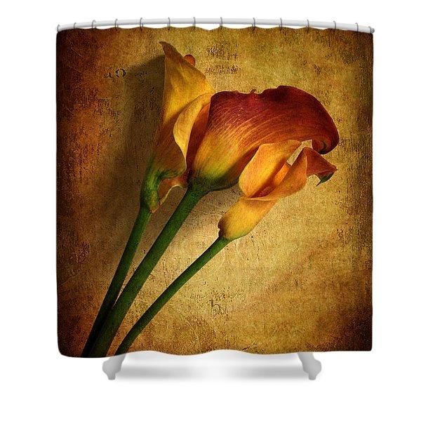 Still Life Calla Shower Curtain