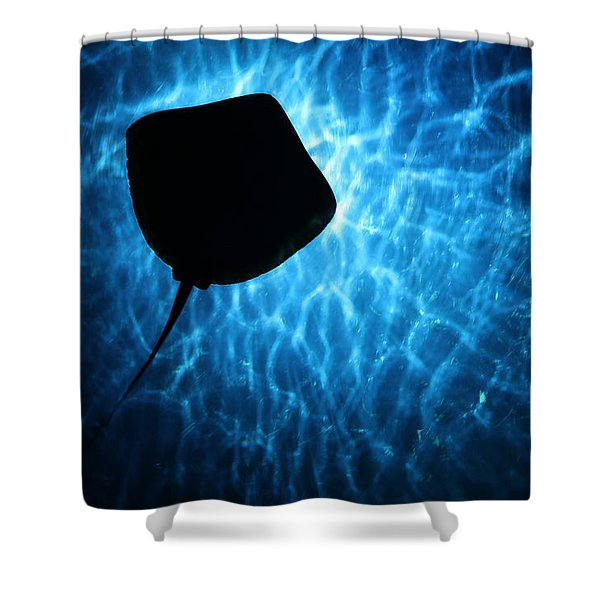 Stingray Silhouette Shower Curtain