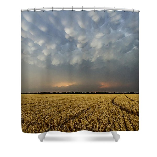 Storm Over Wheat Shower Curtain