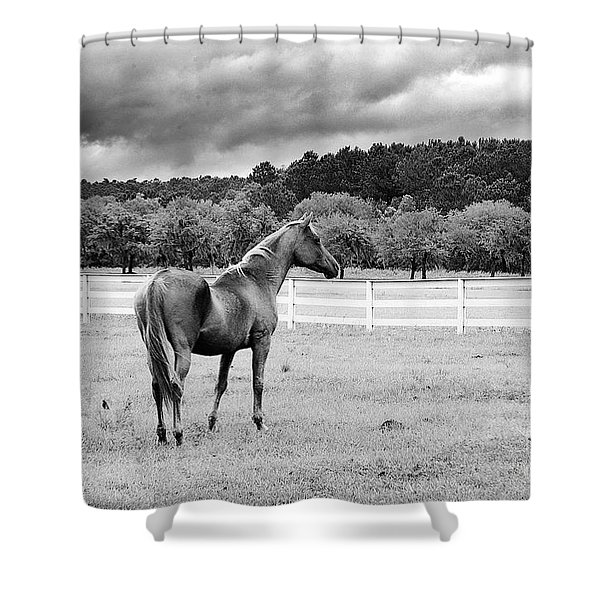Stormy Pasture Shower Curtain