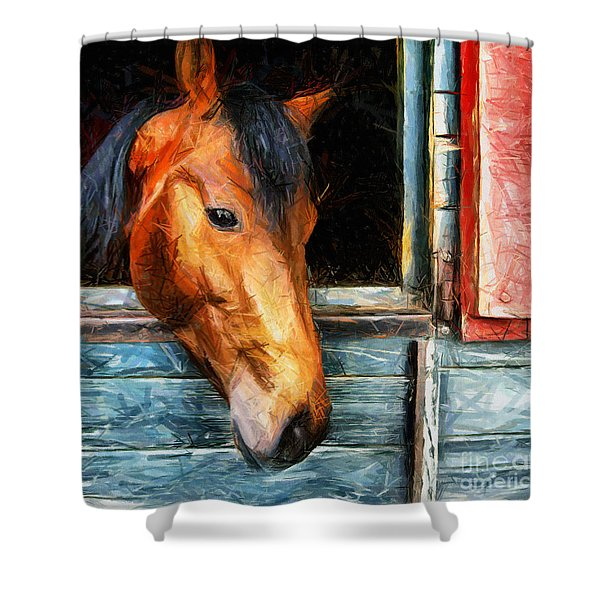 Strong Powerful Beautiful - Horse Drawing Shower Curtain