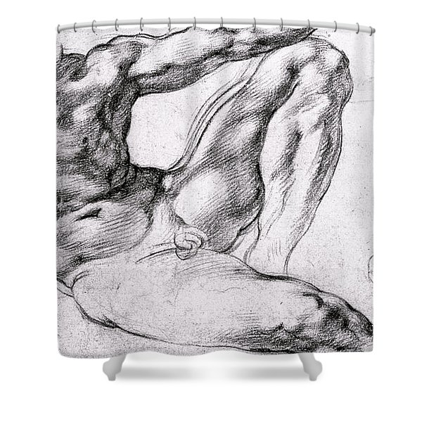Study For The Creation Of Adam Shower Curtain